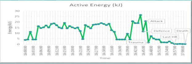 Victim - active energy data.JPG