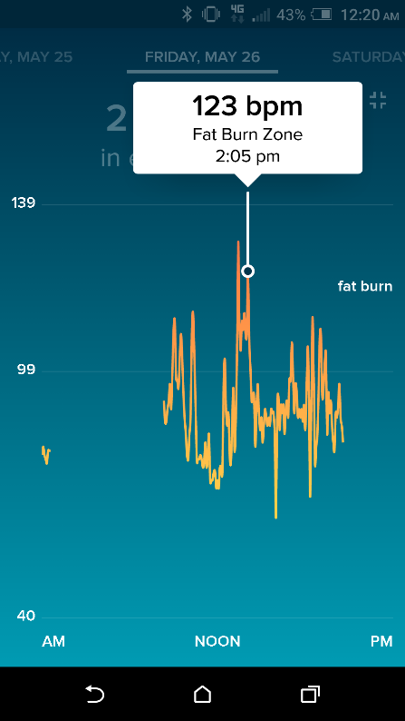 Detailed log of heart rate data.png